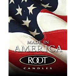Root Unscented Timberline Pillar Candle, 3-Inch by