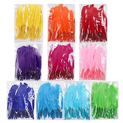 Coceca 500pcs Natural Feathers, Bright Colors, Feathers for DIY -