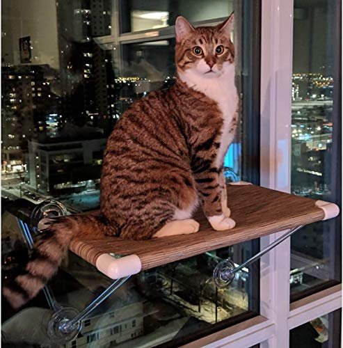 Ultimate Cat Perch No Hanging Wires & Stronger for Increased Reliability (Holds 80 pounds)