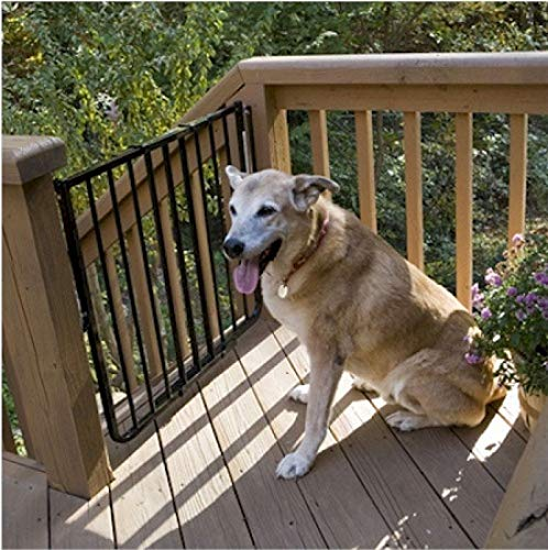 (Cardinal Stairway Special Outdoor Pet Gate - White)