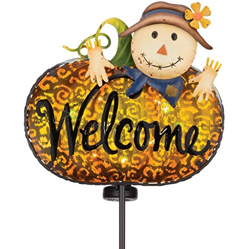 - Regal Art & Gift 11995 Solar Welcome, Scarecrow Garden Stake, Multi