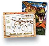 Educational Insights Geosafari Classroom Dinosaur Dig