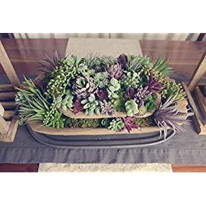 35 Gorgeous Artificial Succulent Plants Curated by Designers for Cohesive Colors, Most Realistic Fake Succulent Plants Available, Largest Set of Succulents 3
