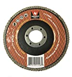 """Neiko 11108A Aluminum Oxide Flap Disc 