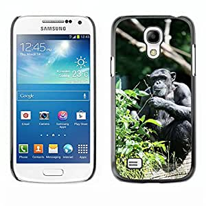 Super Stella Slim PC Hard Case Cover Skin Armor Shell Protection // M00107505 Ape Monkey Zoo Animal Nature // Samsung Galaxy S4 Mini i9190