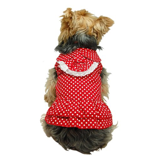 (Anima Red Polka Dotted Dress with White Lace, 2X-Small)