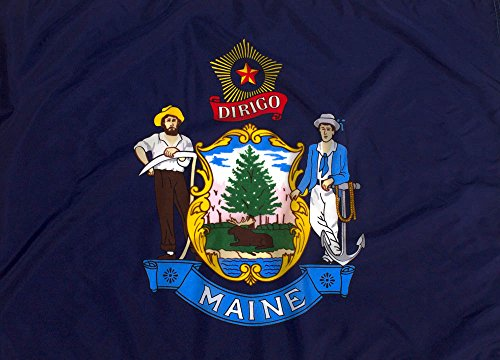 Federal Flags 6x10ft Maine Flag - Highest Quality Outdoor Nylon
