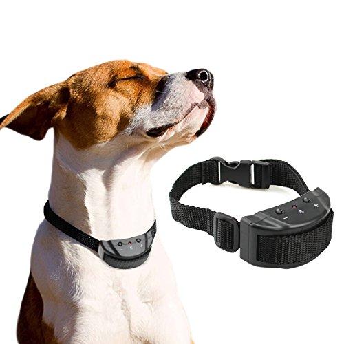 Bark control collar