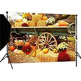 DULUDA 7X5FT Halloween Pumpkin Pictorial cloth Backdrop photography Background studio prop for Christmas WXL39