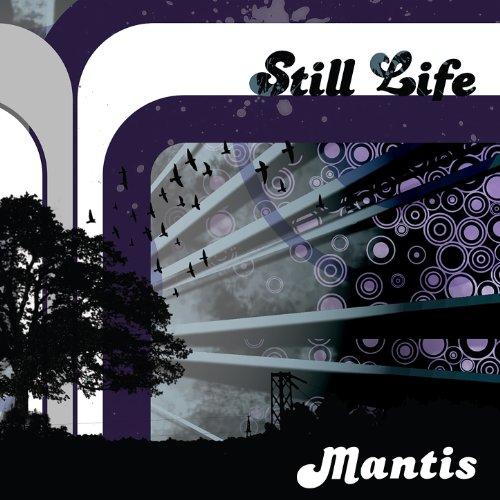 Mantis Reel - 4