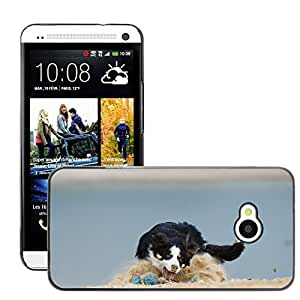 Super Stella Slim PC Hard Case Cover Skin Armor Shell Protection // M00145851 Border Collie Dog Ball Games // HTC One M7