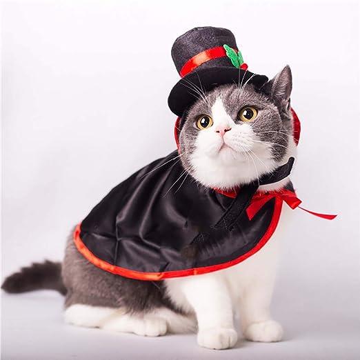 RONGXIN - Vestido de Halloween, Chal para Perro, Gato o Gato: Amazon.es: Productos para mascotas