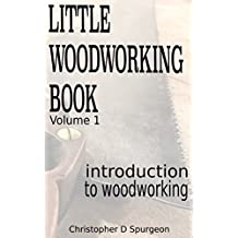 Introduction to Woodworking: Learn how to build Japanese saw horses and a Sawyer Bench (Little Woodworking Book Book 1) (English Edition)