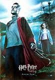 Harry Potter And The Goblet Of Fire Reprint Viktor Krum 27X41 New Stanislar Lanevski Poster