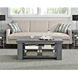 Ameriwood Home Jensen Coffee Table, Multiple Colors (Coffee Table, Gray Oak)