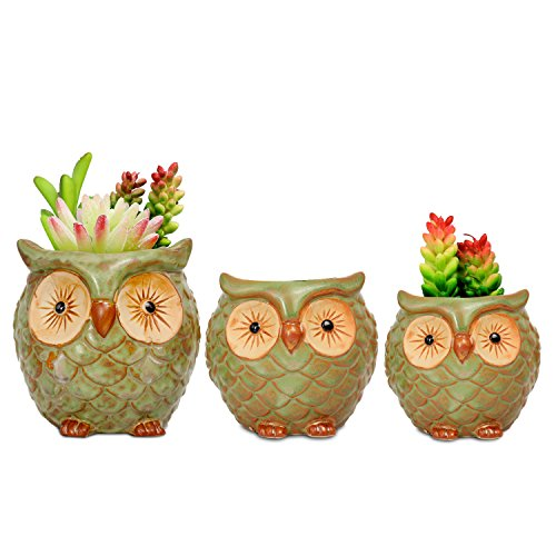 ROSE CREATE 3pcs 3in / 4in / 4.5in Owl Flower Pots by ROSE CREATE (Image #4)