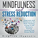 Mindfulness and Stress Reduction: Hypnosis and Meditation for Reiki Healing, Living in the Moment, Energy Healing and Stress Relief Speech by  RingTrue iHypnotic Narrated by  RingTrue iHypnotic