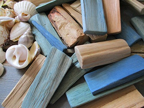 From The Attic Crafts Sea Shells and Wood Bowl Filler Set Beach Decor in Auqa, Seagrass Green and Natural by From The Attic Crafts (Image #2)