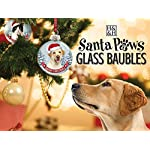 Santa Paws Glass Ornaments Santa Paws Glass Bauble - Rottweiler Ornament, Multi 5