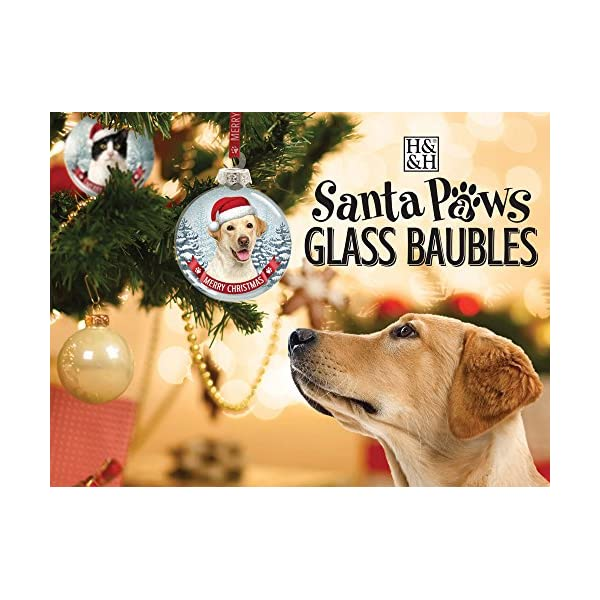 Santa Paws Glass Ornaments Santa Paws Glass Bauble - Rottweiler Ornament, Multi 2