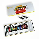 Art Owl Studio Acrylic Paint Set, Nontoxic & Odor-Free 12 x 12ml Quality Painting Supplies for Artists
