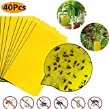 Sehrgud Dual-Sided Yellow Sticky Traps for Flying Plant Insect Such as Fungus Gnats, Whiteflies, Aphids, Leafminers,Thrips