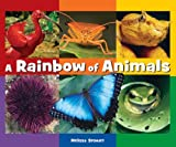 A Rainbow of Animals