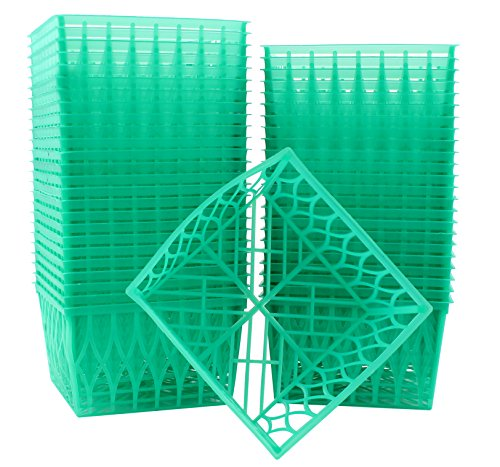 48-Pack Pint Size Plastic Berry Baskets, 4-Inch Berry Boxes with Open-Weave Pattern, Ideal for Summer Picking & Crafts! (48 Boxes) (Tray Easter Veggie)