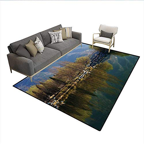 - Carpet,Nature Scenery Reflecting on Water Tranquility Relaxation Theme Lake Mountain,Area Silky Smooth Rugs,Green Slate Blue 6'x8'