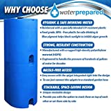 Blue 55 Gallon Water Storage Tank by