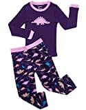 Leveret Fleece & Cotton 2 Piece Pajama Dinosaur Girl 14 Years