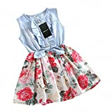 Girls Dress, HeeLinB Princess Dresses Sleeveless Denim Tops Floral Tutu Skirts, 2-3 Years
