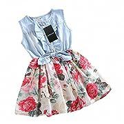 Girls Dress, HeeLinB Princess Dresses Sleeveless Denim Tops Floral Tutu Skirts, 100(1-2 Years)