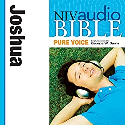 NIV Audio Bible, Pure Voice: Joshua