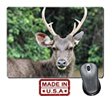 "Liili Natural Rubber Mouse Pad/Mat with Stitched Edges 9.8"" x 7.9"" Deer are wild animals in the wild Food is typical grass Usually found in grasslands Turrets Good a natural Shineys 29202227"