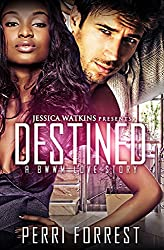 Destined (a BWWM love story)