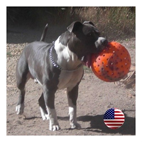 The Big Daddy 10″ Unbreakoball Large Dog Toy – Bright Orange Pet Supplies Review