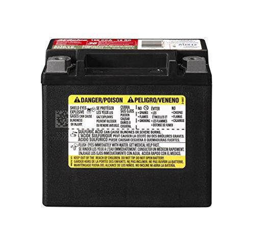 ACDelco AUX12 Professional Automotive AGM JIS 12BS Battery