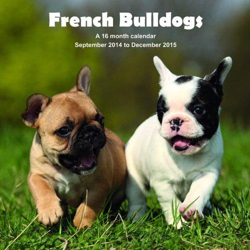 2015 calendars bulldog - 7