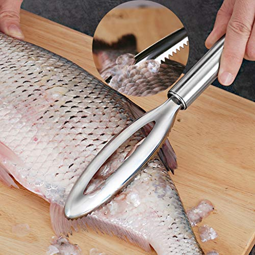- Wffo Scale Scraper Stainless Steel Handle Fish Scales Scraping Remover Peeler Scaler Cleaner Kitchen Tool♚♚for Faster and Easier Fish Scales Skin Removing Peeling