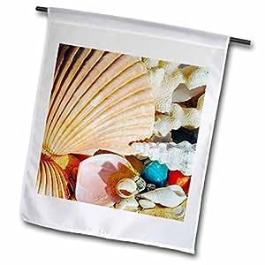 Sea Shells - Sea Shells - 18 x 27 inch Garden Flag (fl_935_2)