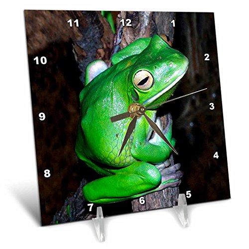 3dRose LLC Tree Frog Desk Clock, 6 by 6-Inch (Frog Desk Clock)