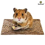 Health Household Baby Care Best Deals - SunGrow Natural Seagrass Mat (Small) : Hand Woven, Safe & Edible for Hamsters, Rabbits, Parrot: Water Resistant & Non-Toxic Chew Toy Bed