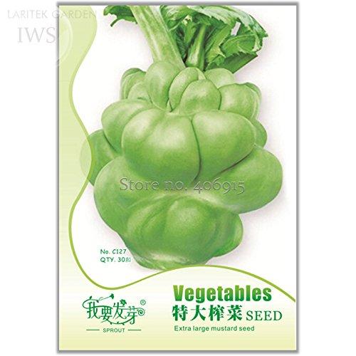 Mustard Leaf - 2018 Hot Sale Heirloom Organic Green Leaf Mustard Brassica juncea Vegetables Seeds, Original Pack, 30 Seeds, Green Healthy IWSC127