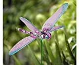 Exhart 50205 Windy Wings Dragonfly Plant Stakes, 7-Inch (Colors May Vary)