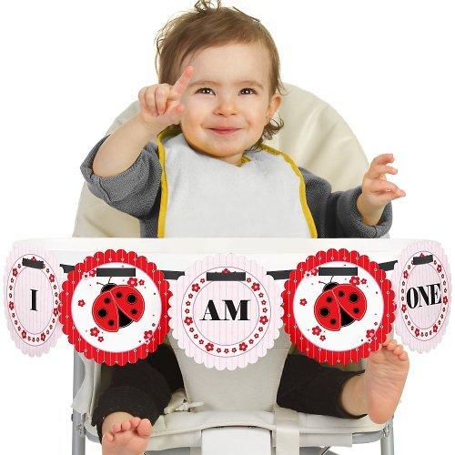 Big Dot of Happiness Modern Ladybug 1st Birthday - I Am One - First Birthday High Chair Banner