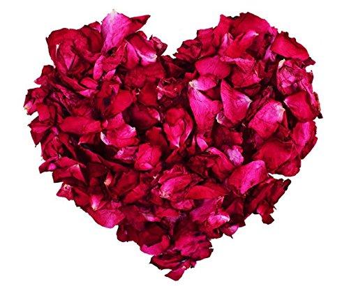 1 Lb Dried natural real red rose flower petals for Wedding party decoration,Wedding Table Confetti Pot, Petal bath, Gift box fill, body wash, foot wash,Homemade Tea Blends, Potpourri, Bath Salts (Foot Petals Rose)