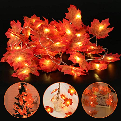 (SunAngel Assorted Rich Fall Colored Silk Maple Leaves for Weddings, Events and Decorating (10 Feet | 30 Lights, Warmwhite))