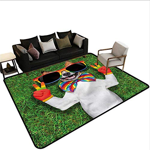 Pride,Large Floor Mats for Living Room 24