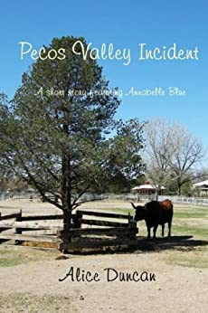 Pecos Valley Incident by [Duncan, Alice]